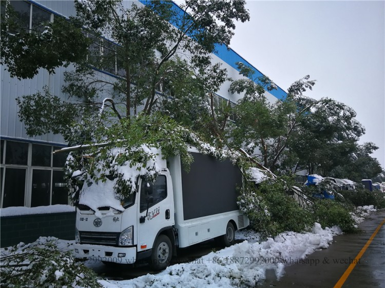 2018 the first and heavy snow in chengli automobile park 04.jpg