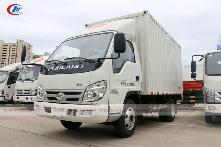 China Foton small van truck 03